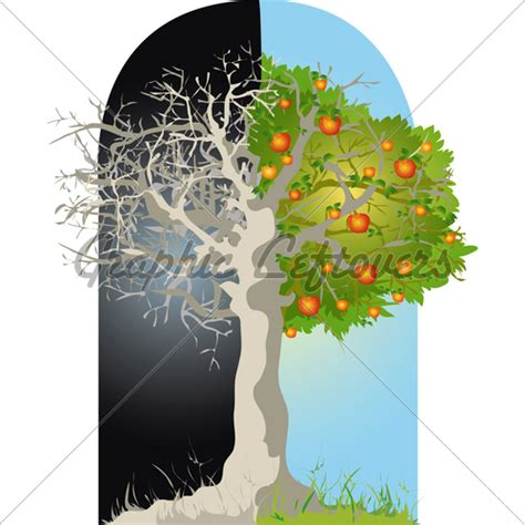 alive tree dead and alive tree 183 gl stock images