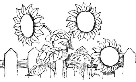 large flower template printable kids coloring