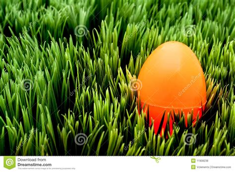 image of an orange easter egg on green grass royalty free