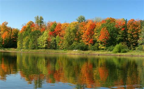 colorful acton ma colorful nature wallpapers wallpaper cave picture to pin