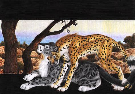Cheetah Omega vcl bloodhound omega