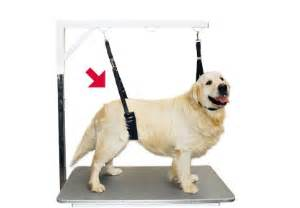 Dog Grooming Table Show Tech Comfort Belly Strap For Small Dogs Transgroom