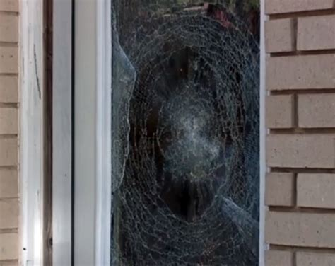 window security film security window film home window tinting commercial inc