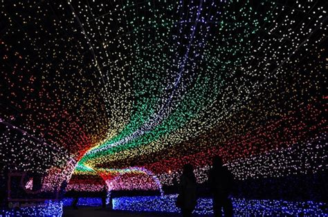 amazing light show unreal light show winter light festival in japan