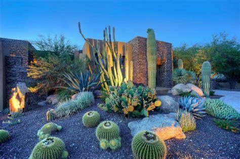 Charming Idee Jardin Avec Gravier #11: Plantes-succulentes-exterieur-cactees-jardin-rocaille.jpeg