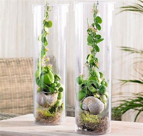 vasi vetro trasparente arredare casa con i fiori vasi in vetro trasparente