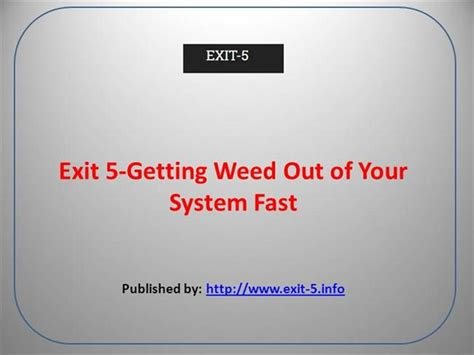 Detox To Get Out Of Your System by Exit 5 Getting Out Of Your System Fast Authorstream