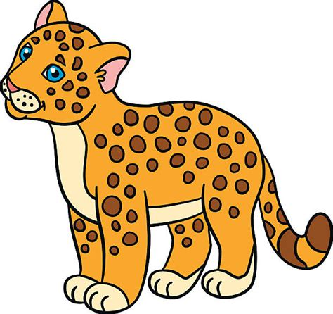 jaguar clipart cub clipart jaguar pencil and in color cub clipart jaguar