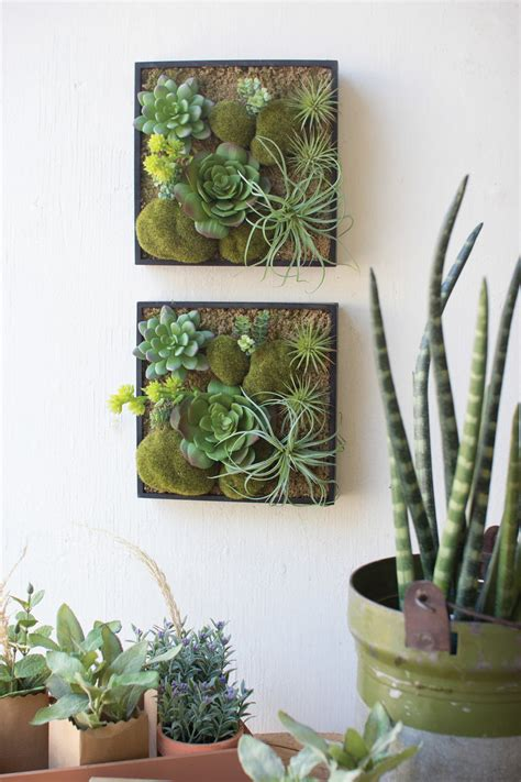 wall hanging succulent garden hom furniture