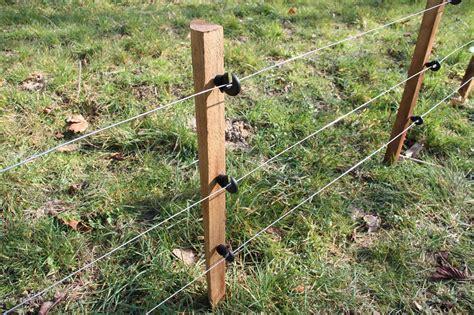 clotelec cloture electrique sangliers cerfs chiens ovins