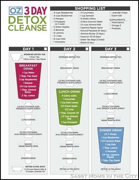 Detox Cleanse From by Dr Oz 3 Day Detox Cleanse