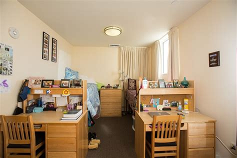 bentley college dorms graduate housing business degree bentley university