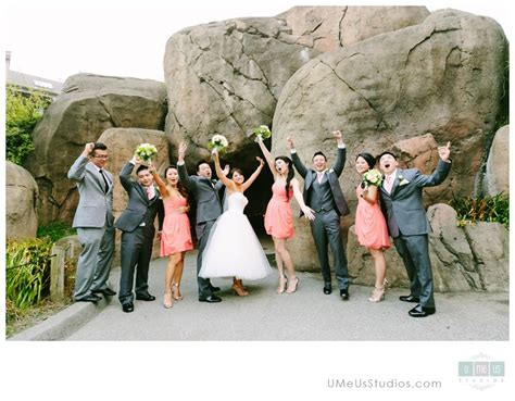crazy wedding photos 10 fun and crazy wedding images bridesmaids and groomsmen