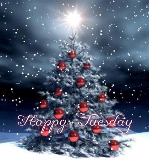 happy tuesday funny christmas tree christmas tree quotes