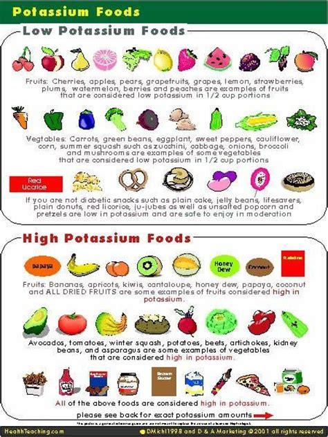 kidney food 25 best ideas about high potassium foods on potassium rich foods