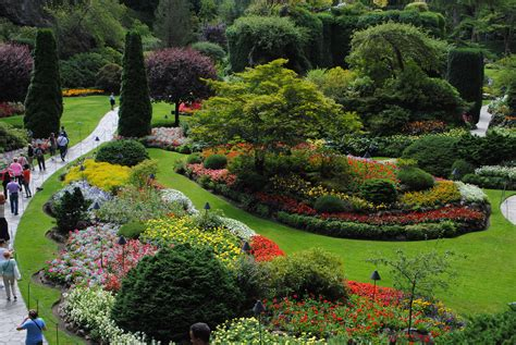 color garden travels jc raulston arboretum