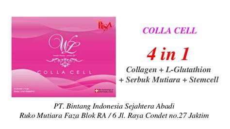 Collagen Terbaru rising peluang usaha terbaru di yogyakarta 085334882589
