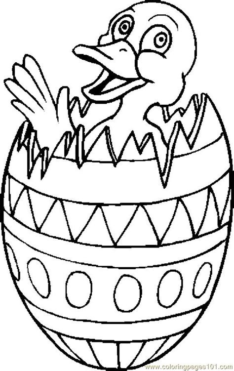 coloring pages duck egg looking for natural duck egg hatching incumaker