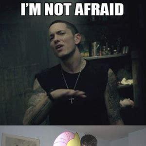 Afraid Meme - meme center arathus profile