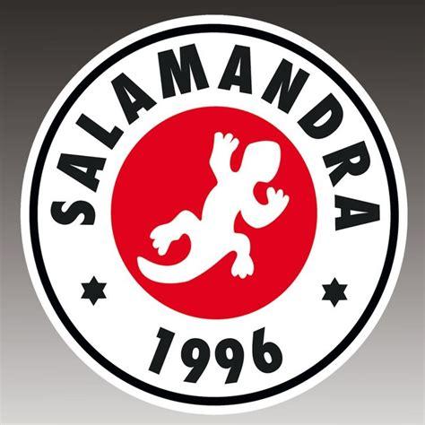 sala salamandra 1 de hospitalet de llobregat l - Sala Salamandra Conciertos
