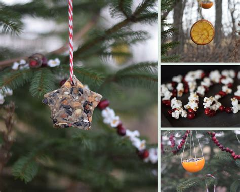 edible tree decorations decorating an outdoor edible tree for the animals wilder child
