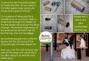 Bunny Hutches For Sale Diy Rabbit Toy Ideas Bunny Approved House Rabbit Toys