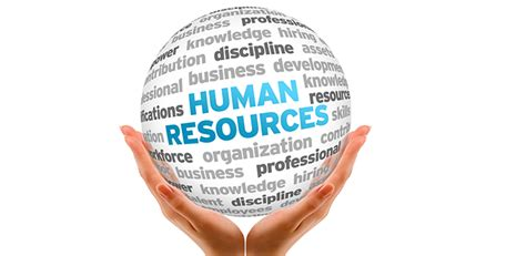 Human Resources Mba Internship by Year Students Project Free Hr Projects Hr Projects