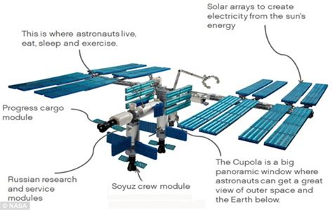 iss diagram building the international space station brick by brick