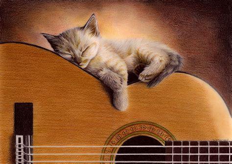 cat guitar wallpaper cat on guitar by bengtern on deviantart