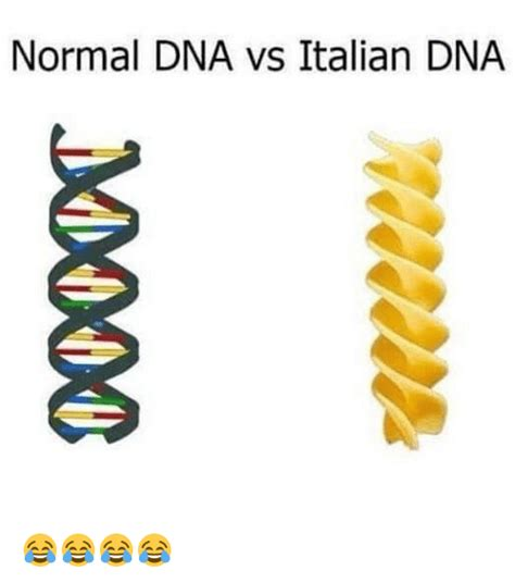 dna meme italian memes of 2017 on sizzle army memes