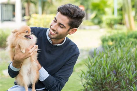 why do dogs always want food why your is your best friend according to scientific