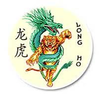kung fu pavia kung fu landriano pavia scuola feng huang