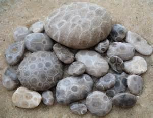 petoskey stones michigan pinterest