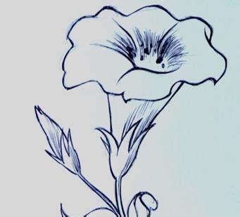come si disegna un fiore come disegnare un fiore facilmente