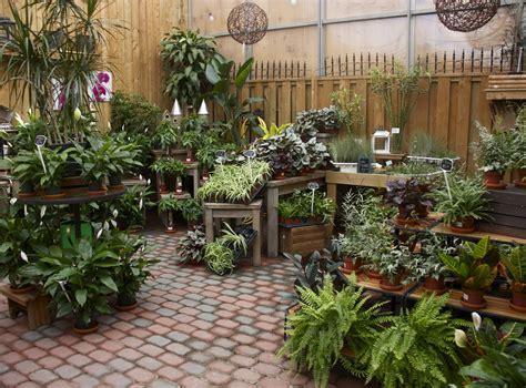 garden market  watering  garden center displays