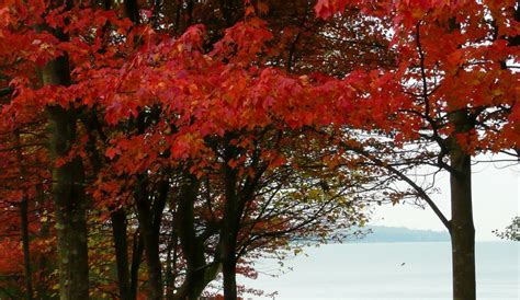 Fall Bargains by Fall Travel Archives Globetrotting