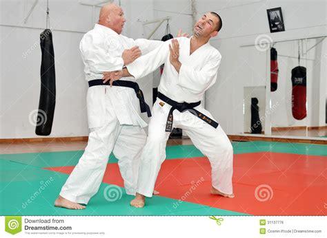 Karate The Masster Of Attack And Defence karate kick stock photo cartoondealer 15917730