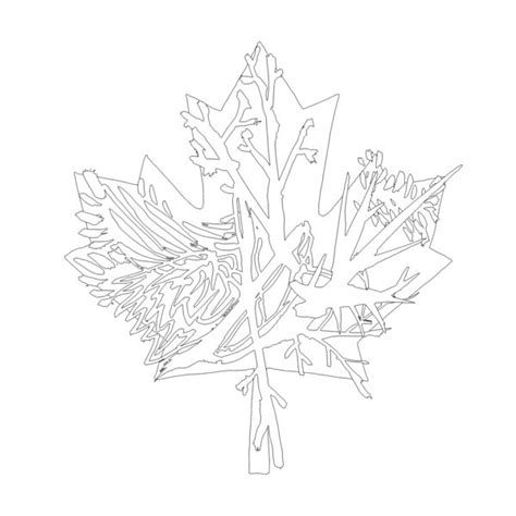 abstract leaf coloring pages 167 best canadian maple leaf colouring pages images on