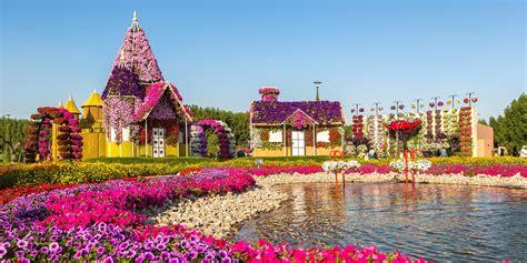 visitors guide  miracle garden dubai miracle garden