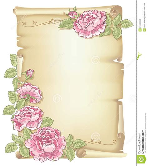 scroll and roses stock vector image of pink roll page