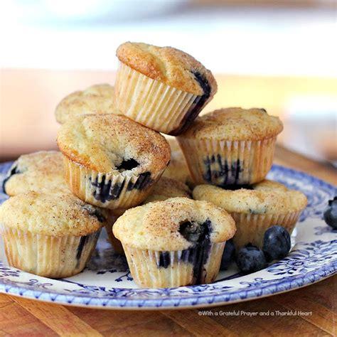 blueberry corn mini muffins recipe dishmaps