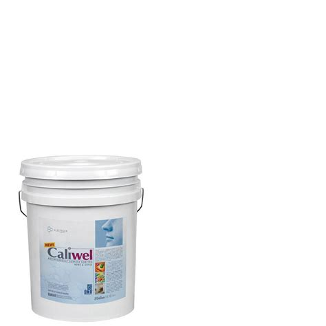 home depot 5 gallon interior paint caliwel home office 5 gal guardian white latex premium