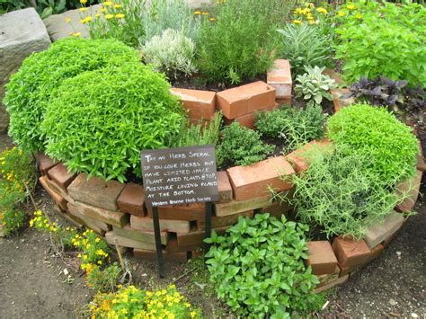 backyard herbs spiral herb garden design photograph this herb garden