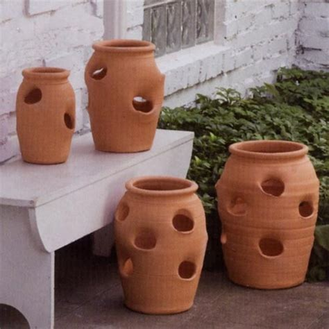 Clay Strawberry Planter All About Strawberry Pots