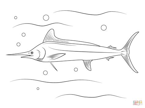 marlin fish coloring pages white marlin coloring page free printable coloring pages
