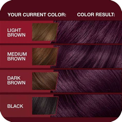deep velvet violet hair dye african america vidal sassoon pro series london luxe hair color 3vr deep