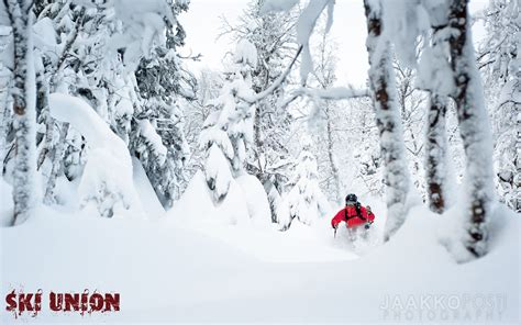 wallpaper powder powder skiing wallpaper wallpapersafari
