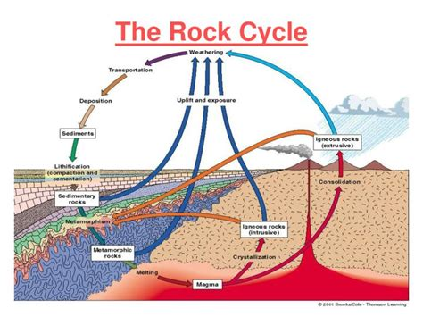 Section 3 1 The Rock Cycle by Ppt Rock Cycle Sec 2 1 Powerpoint Presentation Id