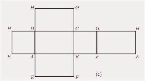 contoh gambar jaring jaring balok ukurannya lengkap