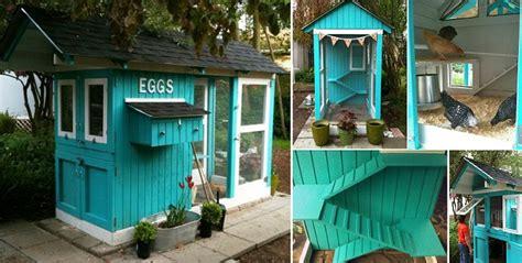 blue chicken house home design garden
